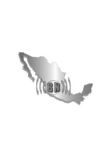proyecto_bnuevas